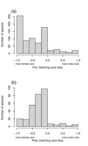 Distribution of sex bias in pre-hatching and post-hatching care in birds (-1: female only care, 0: equal male and female care, 1: male only care).